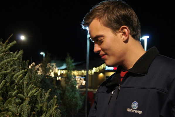 looking for a Christmas tree