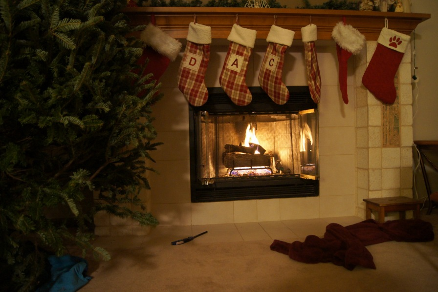 Christmas Time is Here|allyrenne.wordpress.com